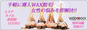 画像:WAXXXX