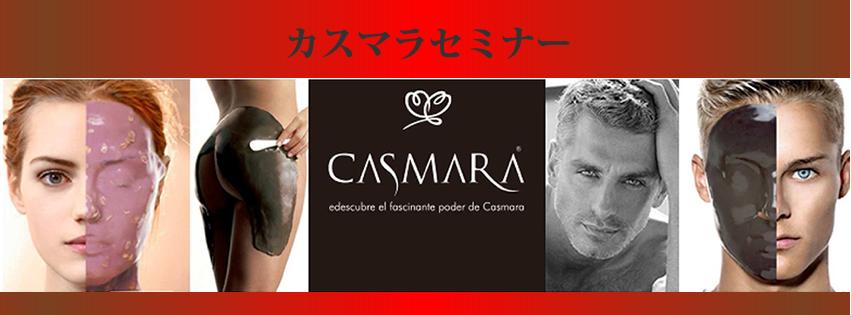 カスマラセミナーFB